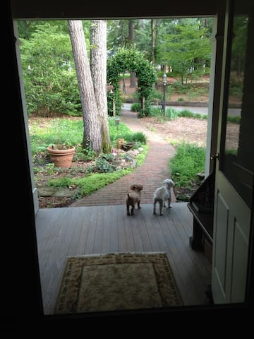 Dusty and Luke guarding the front porch!
