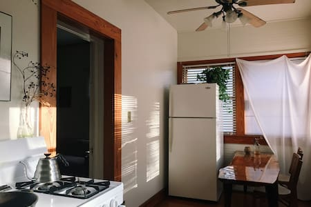 Large 1 Rm/1 Bath Apartment Downtown - Gainesville - House
