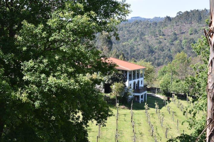 Quinta da Quintä - Rio Longo