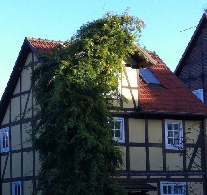 Ferienhaus El Refugio in Edertal-Königshagen