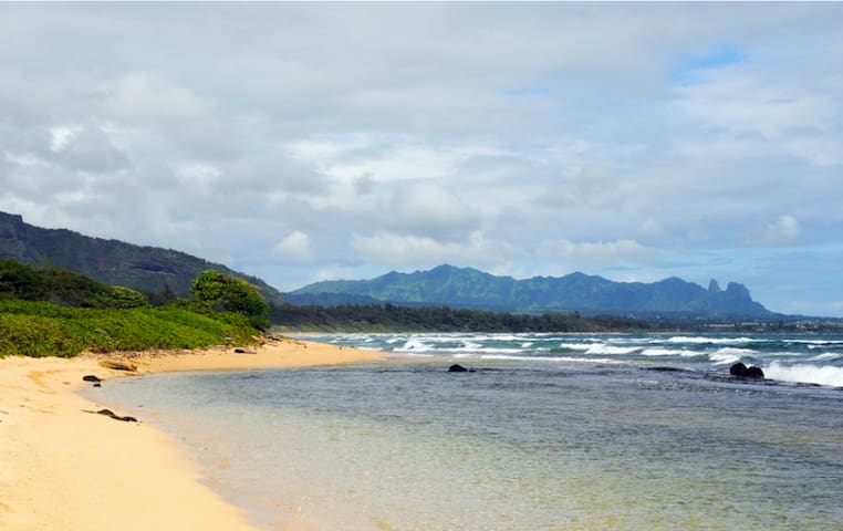 Kauai Oceanfront *Affordable Luxury - Lihue