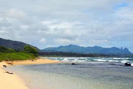Kauai Oceanfront *Affordable Luxury - 리휴(Lihue)