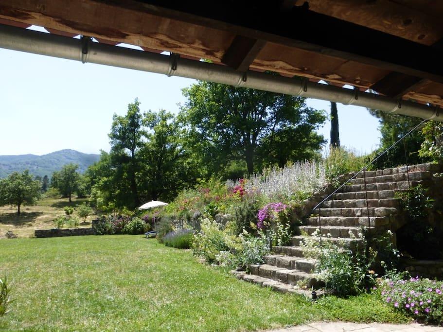 tuin voor terras jardin