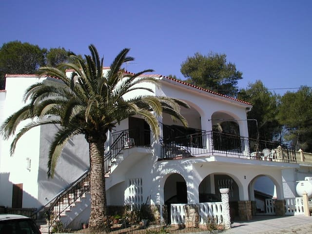 Spacious villa with private pool - Valencia