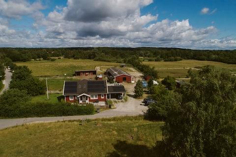 Bondegårdsidyl i grønne områder tæt på København