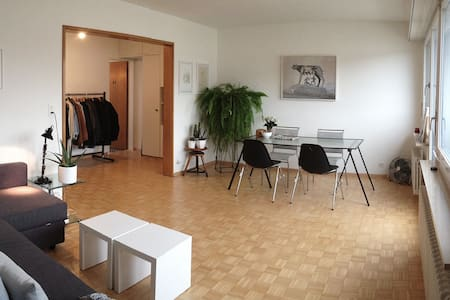 Kim-Lilian and me are living together in a flat located 5 min by foot from Basel SBB.  We really love our flat because it is bright, with a perfect layout and situated in a quiet and lovely neighborhood. The flat has two balconies.