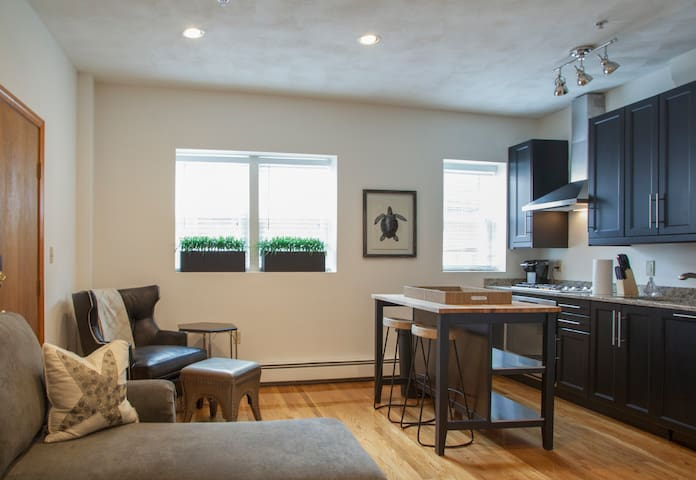 Spacious North End 1 BR | 1BA