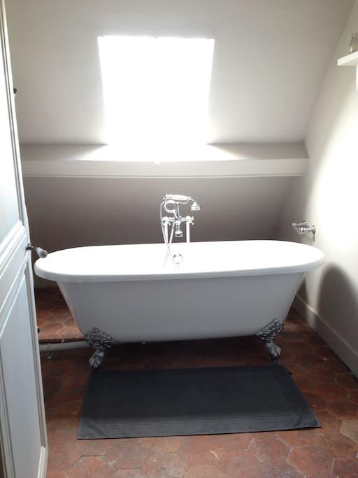 baignoire sous le ciel dans une salle de bain retro / bathroom with english and vintage decoration