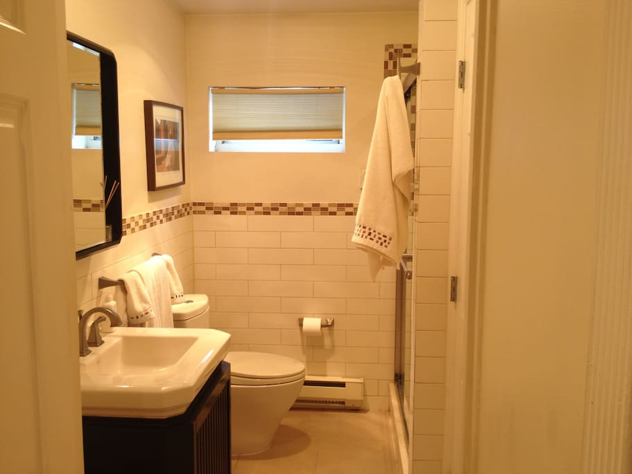 A newly renovated 3-piece bathroom with towels and rags
