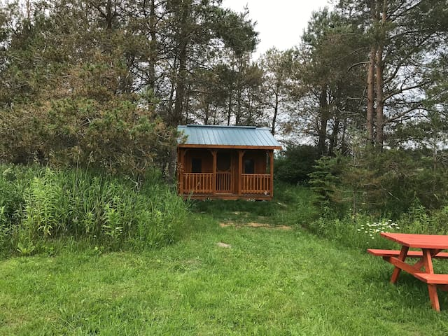 Wagamese Glamping Bunkie, Hepworth, 3 Wooded Acres