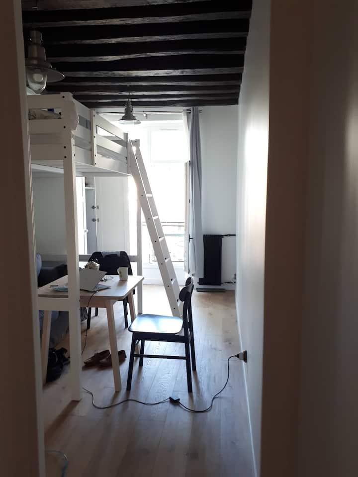 Joli studio neuf dans le Maris, exposition Ouest
