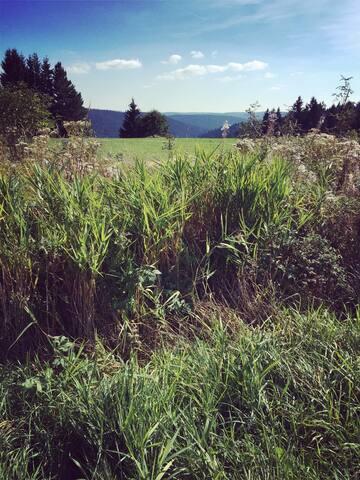 Schön im Wald - Schönwald im Schwarzwald - อพาร์ทเมนท์