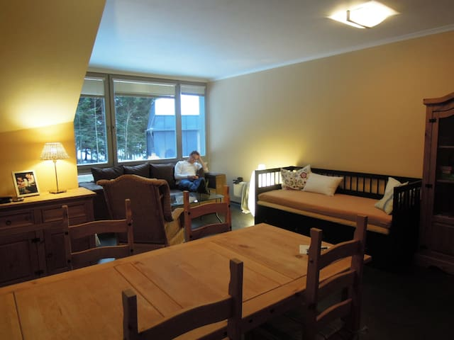 Apartman 38m2 in ski resort - Harrachov - Apartment