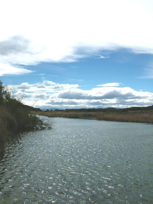 Local River (5 minutes Walk)