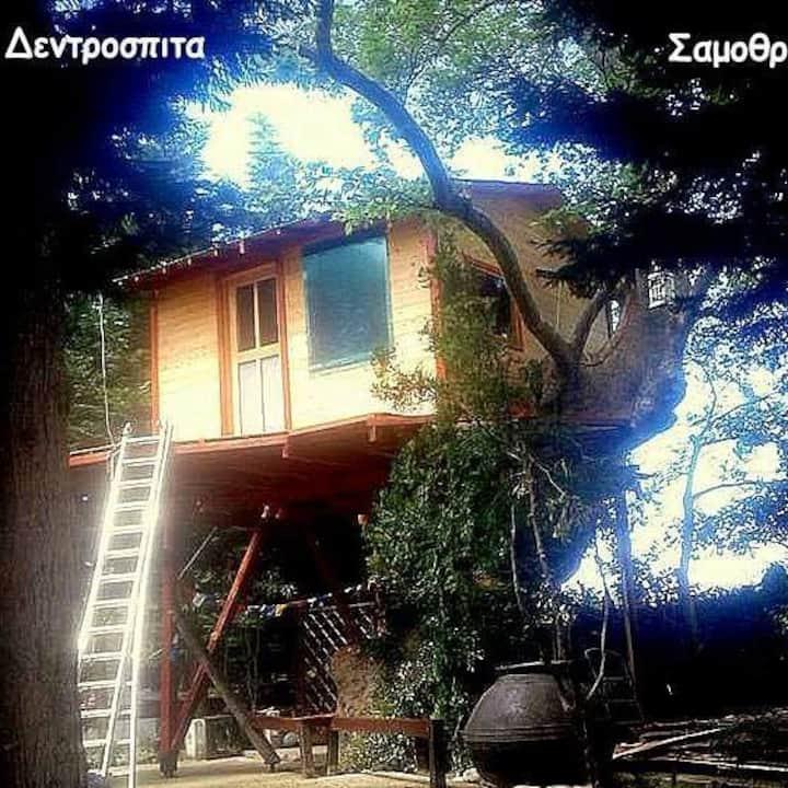 ΆΛΦΑ-ΆΛΦΑ Treehouse Philoxenia