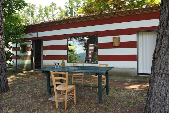 Il Pollaio - Londa - Blockhütte