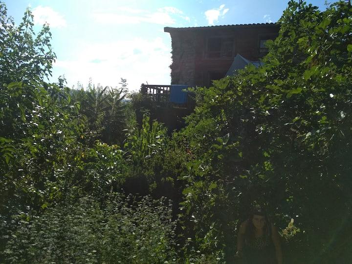 Chambre dans maison de charme avec vue et jardin