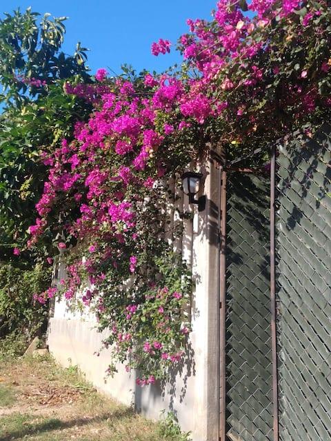Habitación Hortensia en Santa María Huatulco.