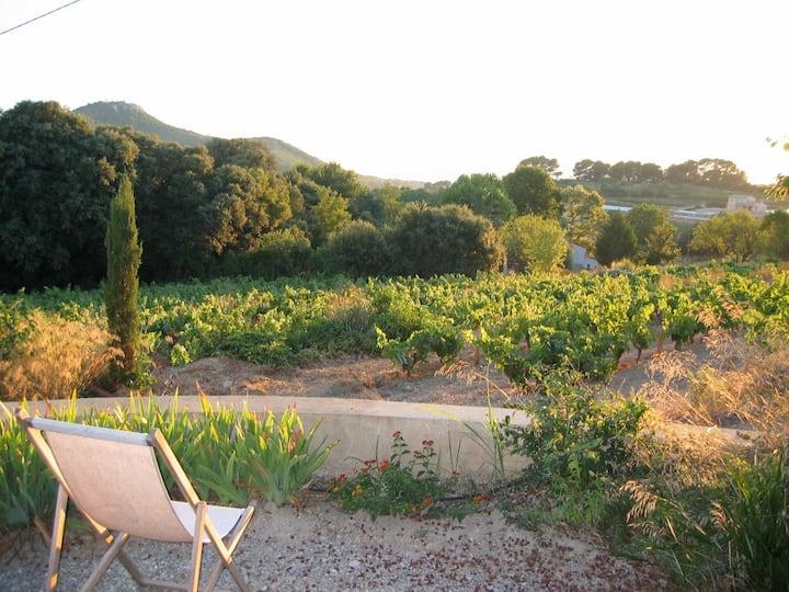 Maison dans les vignes déco moderne