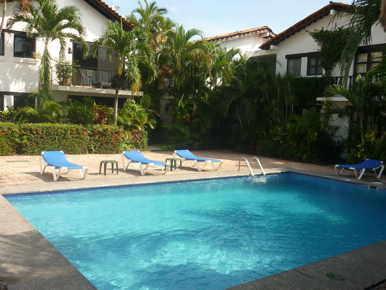 Well maintained tropical gardens and pool of Suites Flamingo