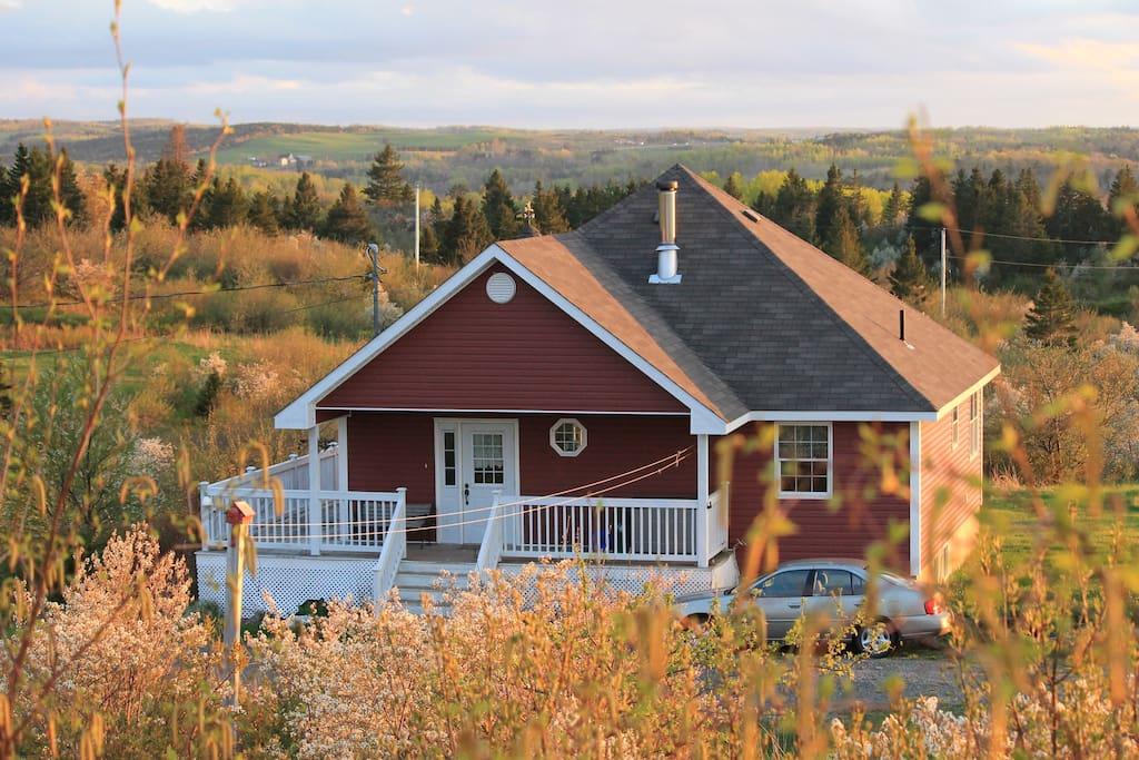 Chez dianne case in affitto a antigonish nuova scozia for Bungalow con cantina sciopero