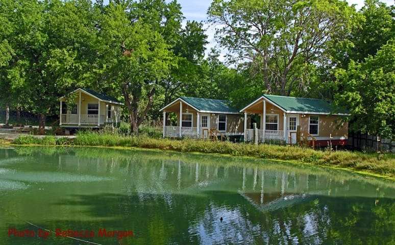 Get back to Nature...naturally! - Denton - Bed & Breakfast