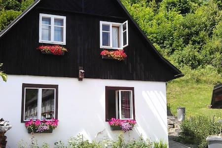 holiday house Rokytka - Kryštofovo Údolí