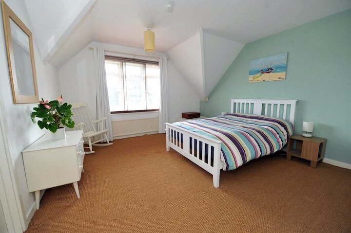 6 bed with Equestrian Facilities