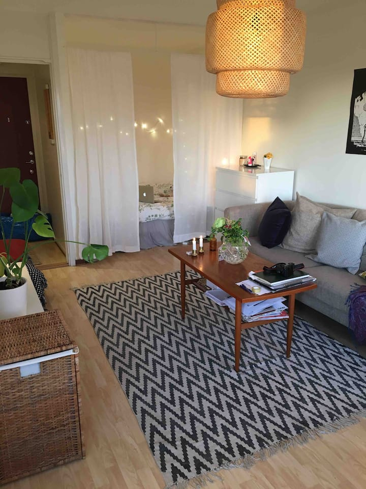 Welcome to a bright&cozy apartment close to Globen