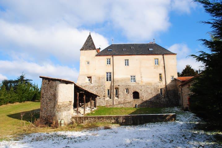 A 1h deLyon - Chambres dans château - Sainte-Colombe - Kastil