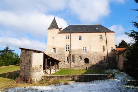 A 1h deLyon - Chambres dans château - Sainte-Colombe