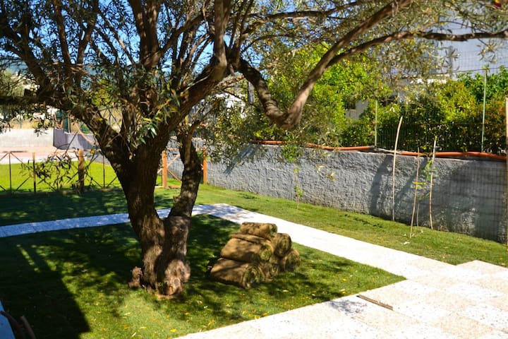 beautiful spacious villa with olive - Isca sullo Ionio