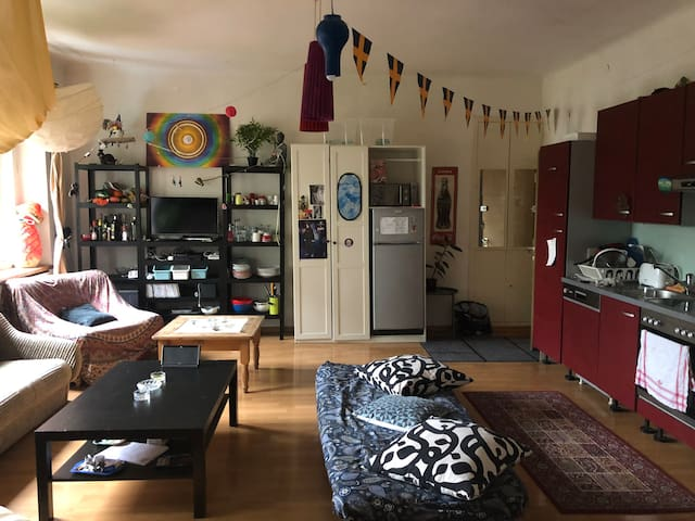 Spacious Room in a BIG flat VERY CLOSE TO CENTER