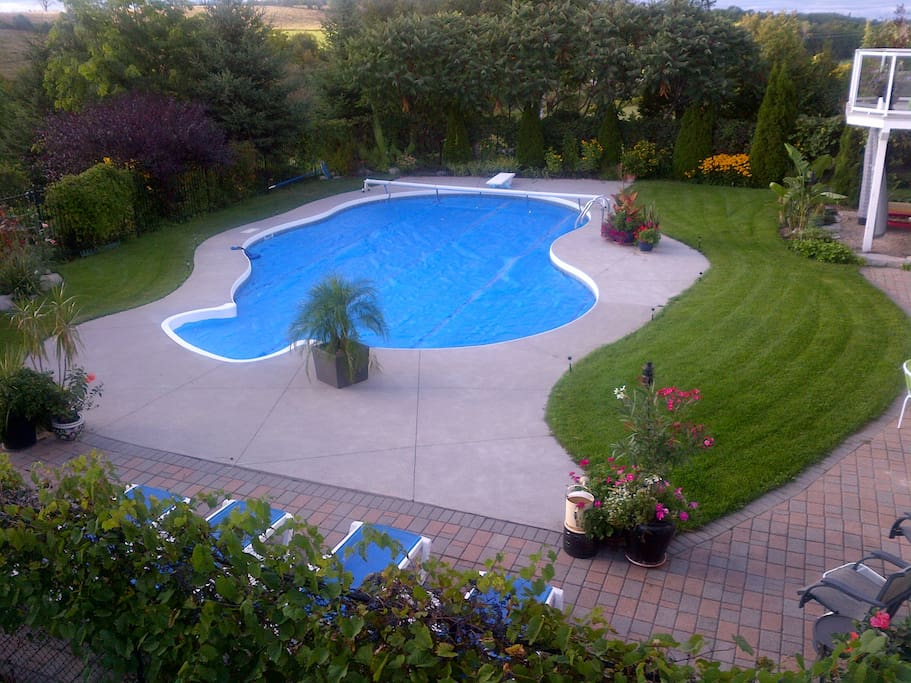 Enjoy the pool and perennial gardens