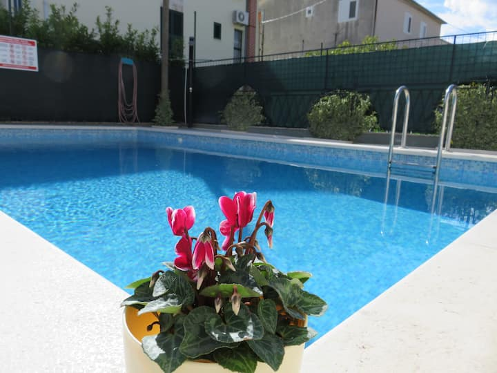 Apartment Bilopavlović with pool 1
