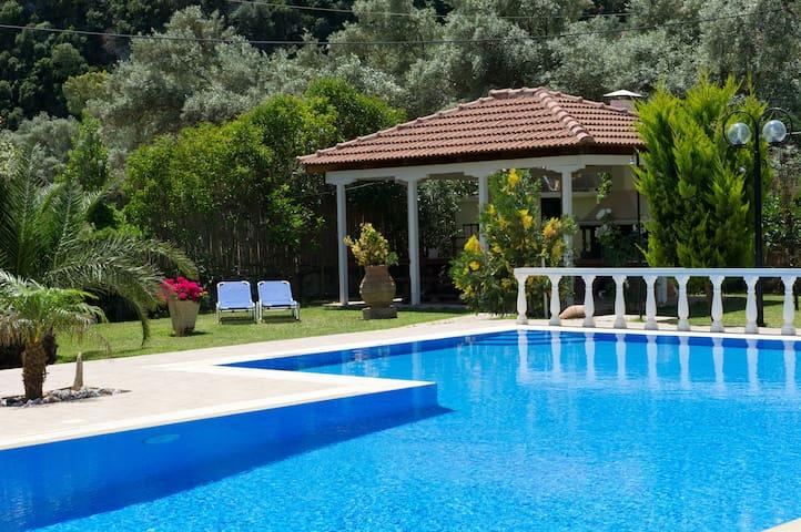 Villa Dimitris Apartments & Studios - Lefkada - Condominium