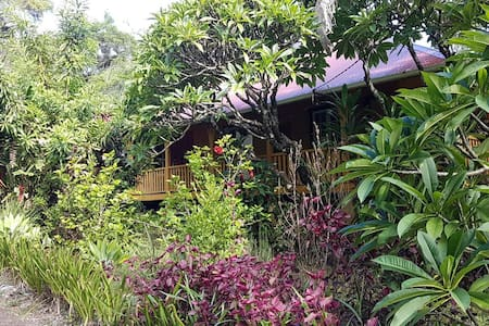 Beautiful Queenslander in Terania - The Channon  - 独立屋