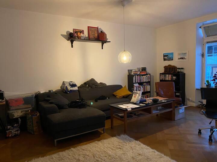 Nice 2 room apartmen in SoFo, 61sqm