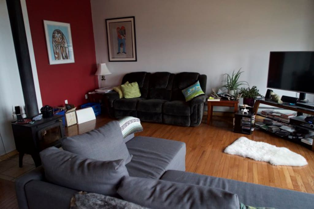 bright living room, pull out couch