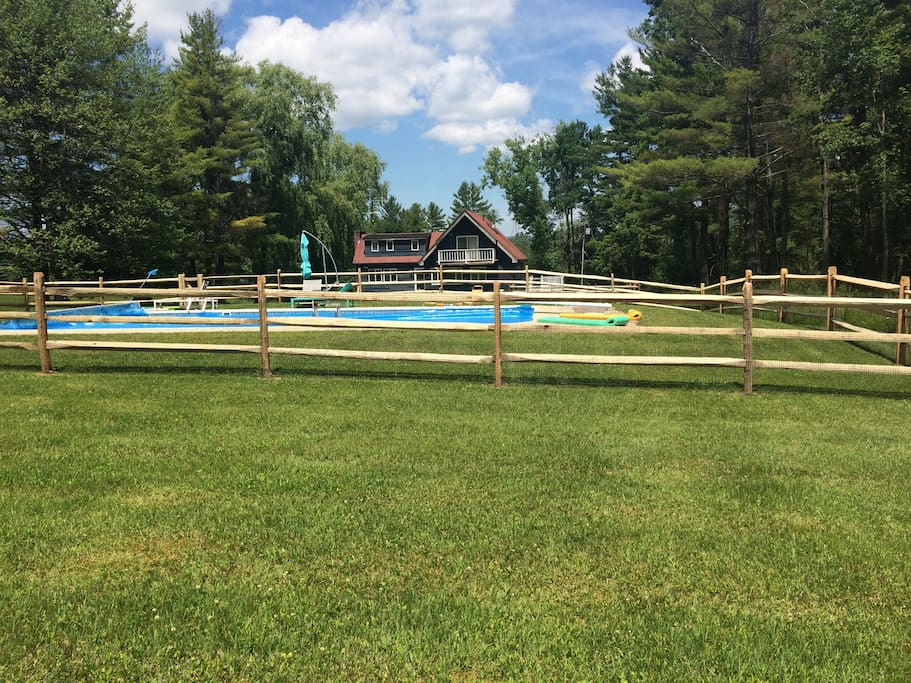 A view of the pool from the back lawn.