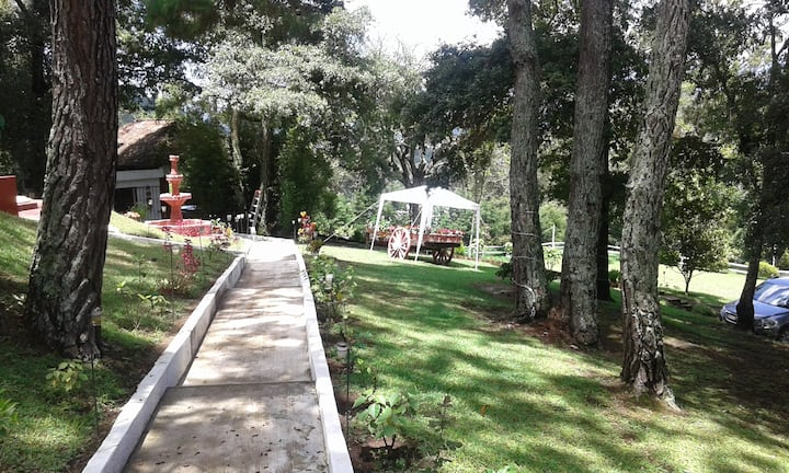 Bosque Macadamia - Paradise to Relax