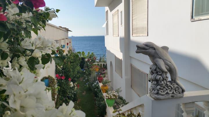 beneden appartement direct aan zee