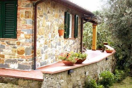 Nel verde delle colline  Toscane - San Gennaro - Bed & Breakfast