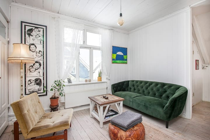 Small and cosy apartment in 101