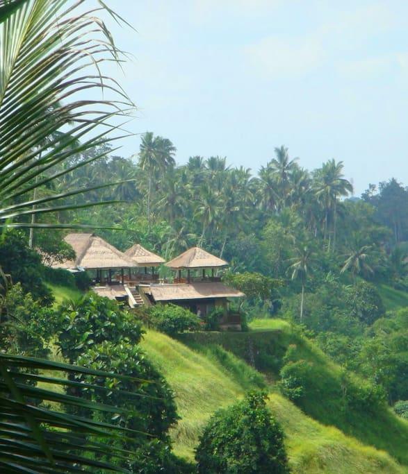 Villa Santai Ubud Luxury Rental