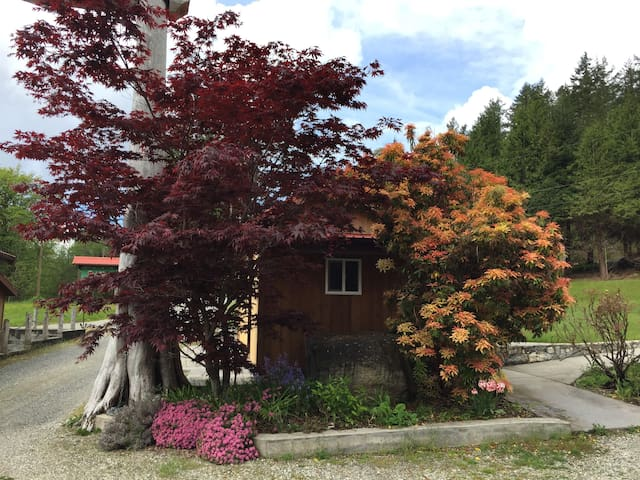 Blue Moon Cottage