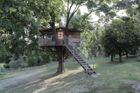Ciabot Rosso Tree House