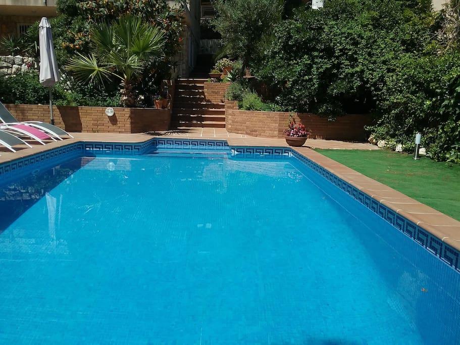 piscina 8x4