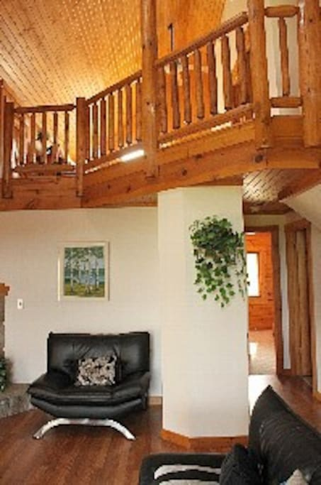 Luxury 4BR Log Cabin by Galena Lake