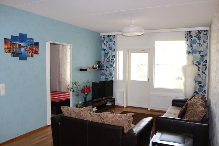 Insinöörinkatu Apartment - Tampere - Lägenhet